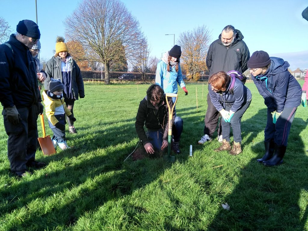 A tree planting event held last November at Weir Hall Park, Edmonton