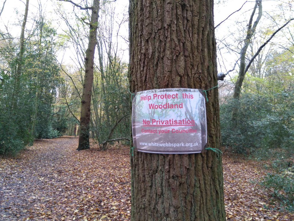 A 'protect the woodland' poster attached to a tree at Whitewebbs Park