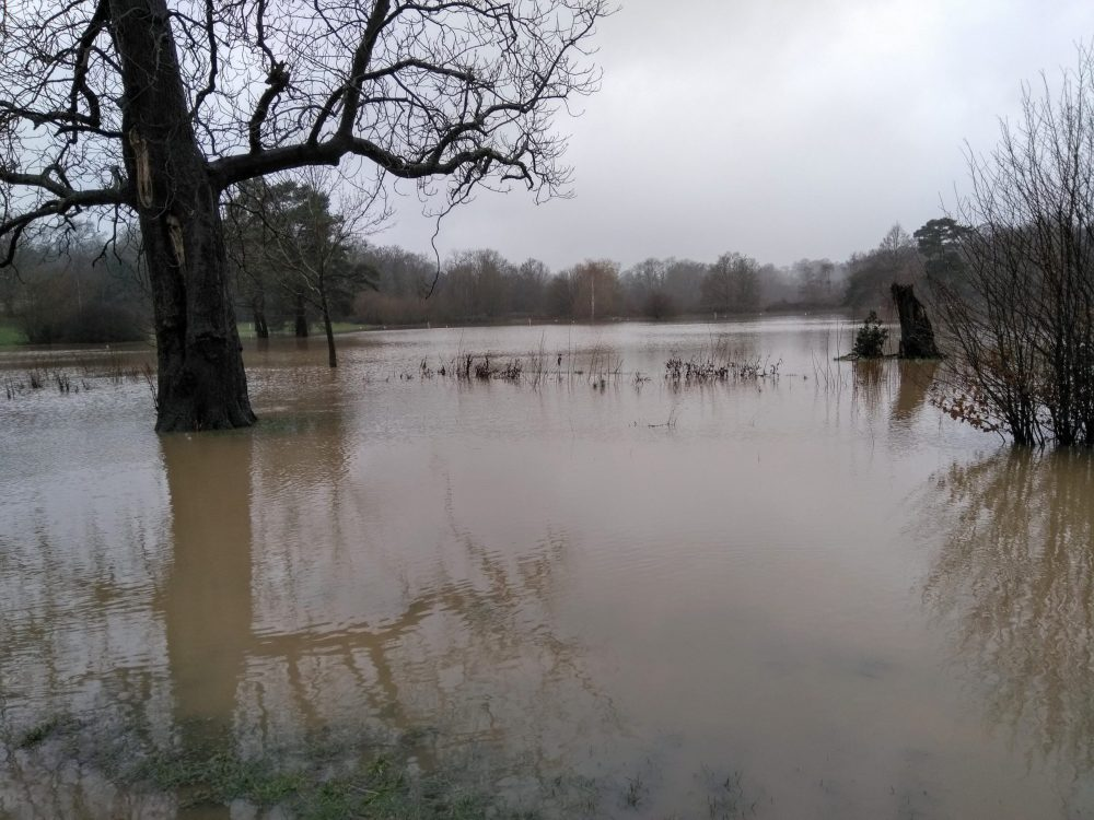 Large arts of Whitewebbs Park Golf Course were underwater on 14th January, and again on the 28th