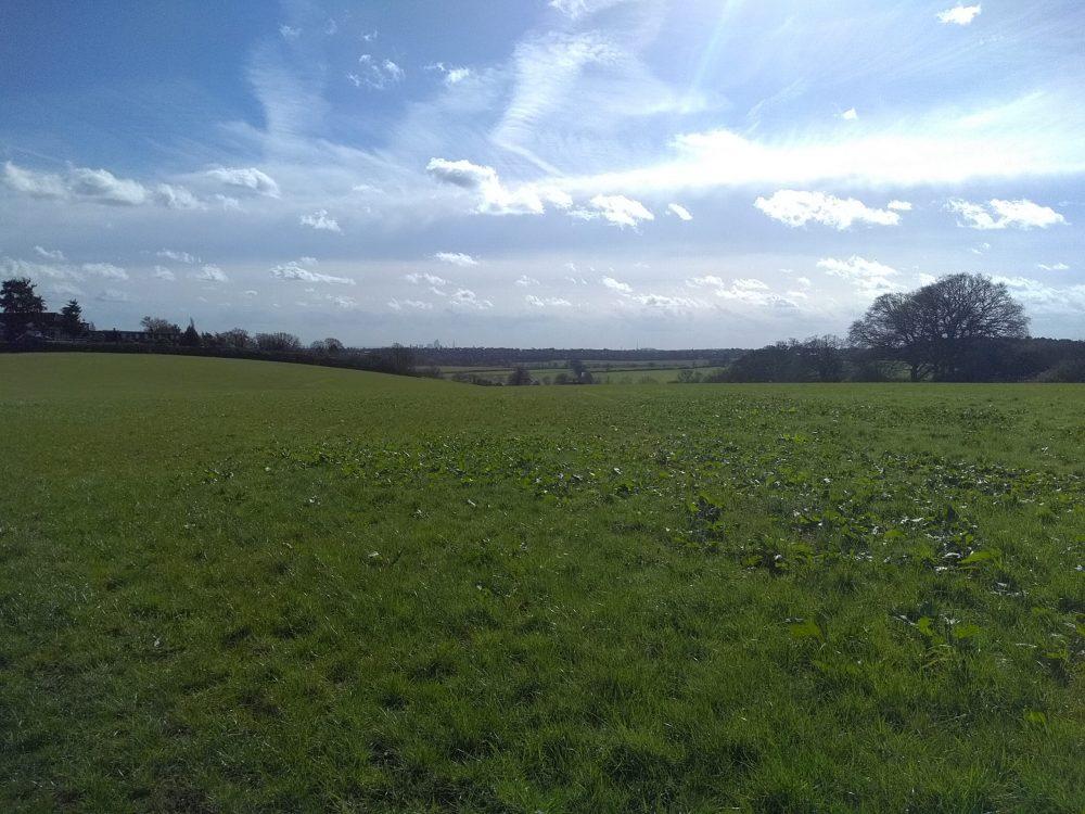 Green Belt land near The Ridgeway in north-west Enfield