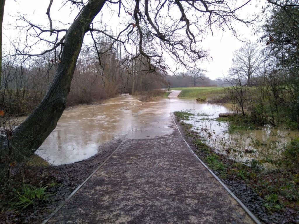 Flooding along the Turkey Brook at Forty Hall Estate in January this year